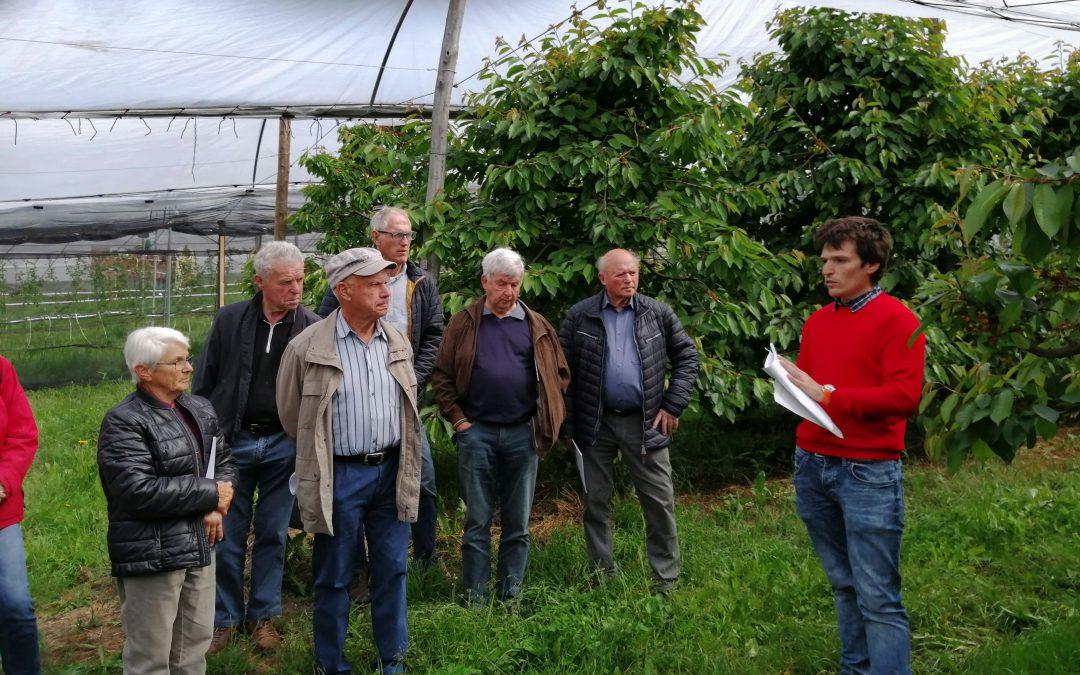 Obstbau-Lehrfahrt an den Hochrhein
